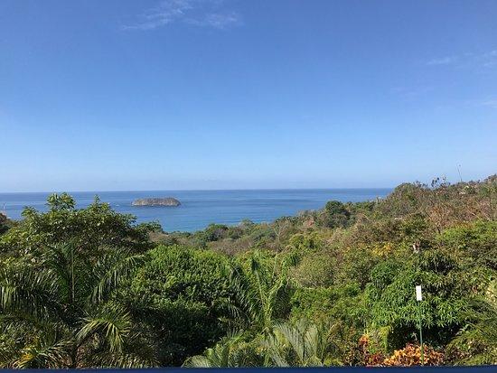 Hotel Villa Roca Picture