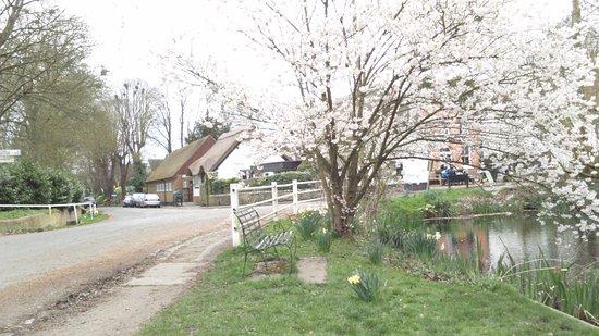 Wallingford, UK: Beautiful location