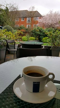 Hotel 55: Great chill out in a lovely garden to take coffee fantastic