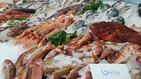 Fondi, อิตาลี: Pesce Fresco