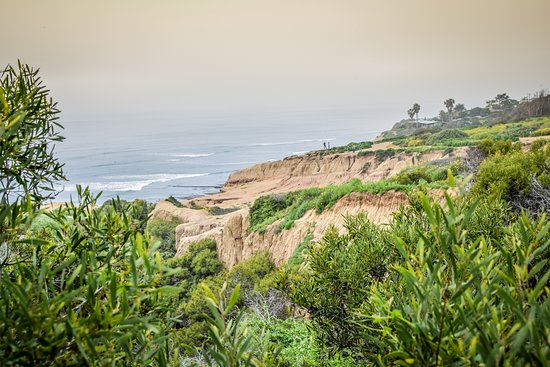 Sunset Cliffs Natural Park: sunset cliffs im Nebel