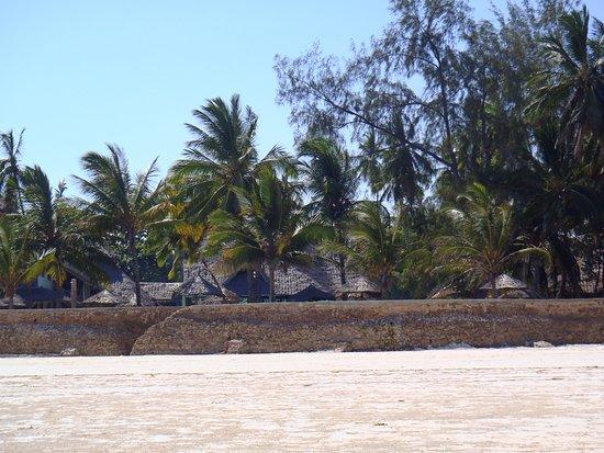 Neptune Village Beach Resort & Spa : hotel from beach