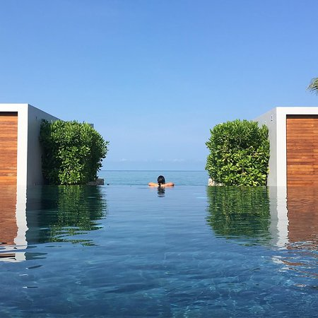 Casa de La Flora: Infinity pool in the morning