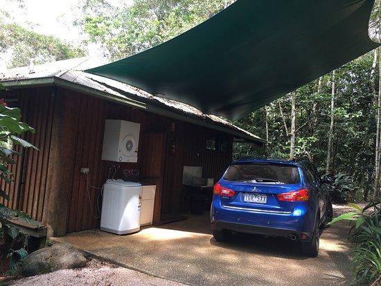 Malanda, Австралия: Kookaburra