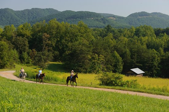 Meadows of Dan, VA: Horse Back Riding