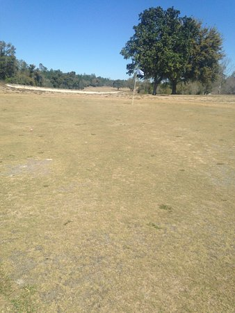 Ocala, FL: Horrible course ,, cannot believe they take our money to play here .