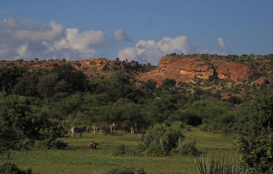 Limpopo Province, South Africa: Mapungubwe