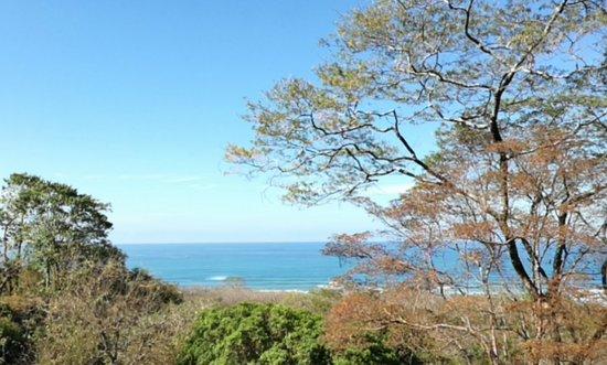 Vista Naranja Ocean View House: orca-image-1489416755256_large.jpg