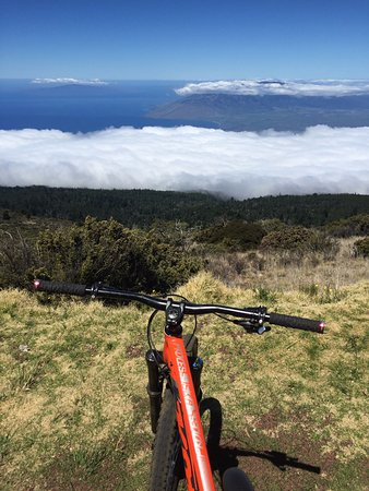 Krank Cycles: Several miles in and still above the clouds!