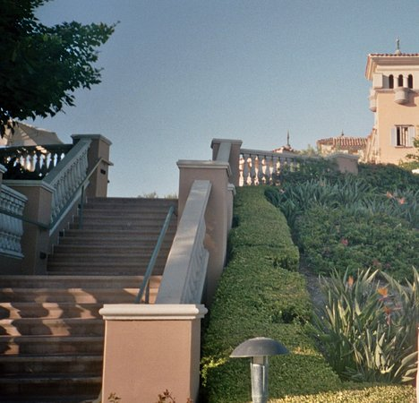 Marriott's Newport Coast Villas: Villa and birds of paradise bushes