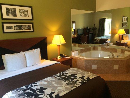 Hiram, GA: King Jacuzzi Room