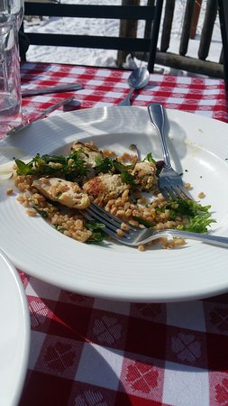 Lynn Britt Cabin : My lunch