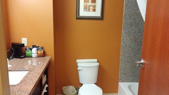 Days Inn & Suites by Wyndham Russellville: Nice, modern bathroom.