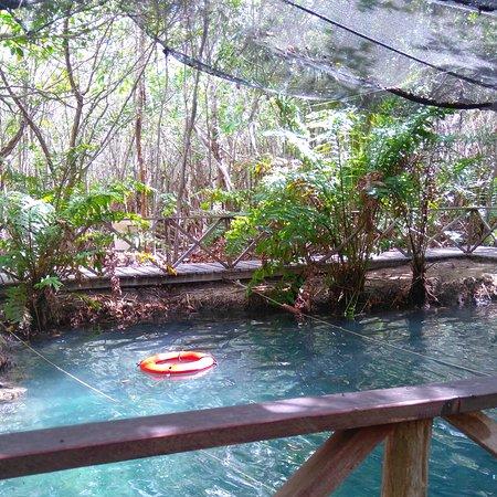 Yucatan, Mexiko: IMG_20160726_153731_large.jpg