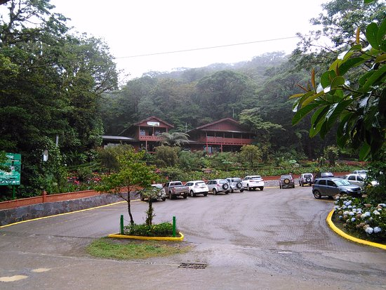Monteverde Cloud Forest Reserve, Costa Rica: Entrada