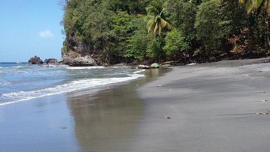 Le Vauclin, Martinique: 20170316_131913_large.jpg