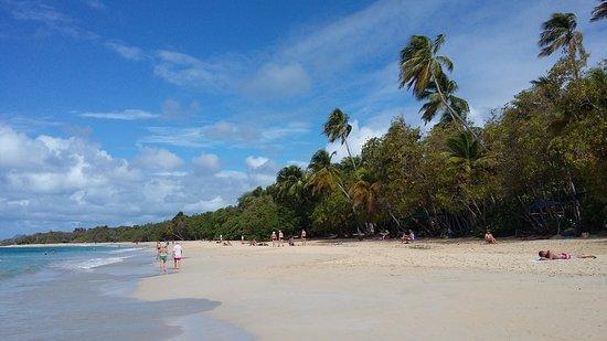 Le Vauclin, Martinik: 20170315_092713_large.jpg