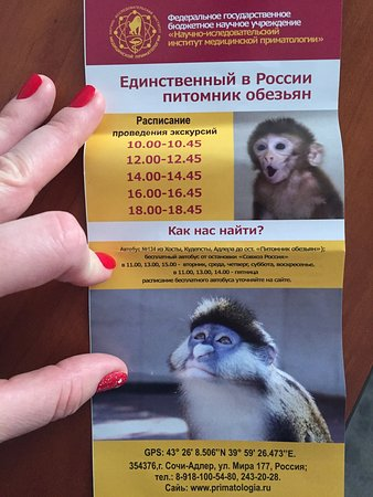 Vesyoloye Photo