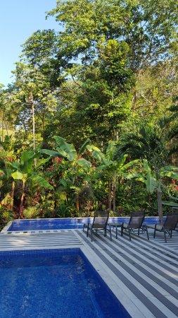 Hotel Plaza Yara: prachtig zwembad van Plaza Yara