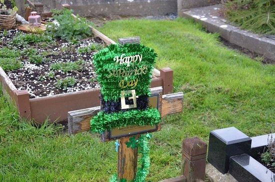 Cemetery - Public Services & Government - Bohermore ...