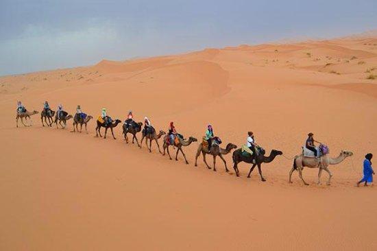 Sahara Tracks