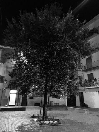 Fidenza, Itália: photo3.jpg