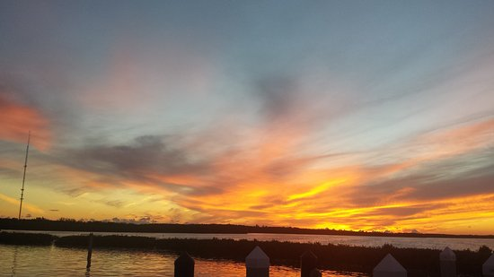 Tavernier, FL: 20151011_190600_large.jpg