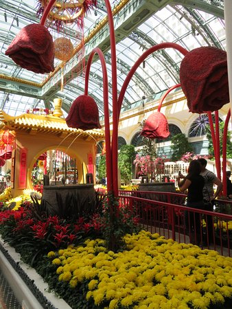 Photo of Botanical Garden Conservatory & Botanical Gardens at Bellagio at Bellagio, Las Vegas, NV 89109, United States