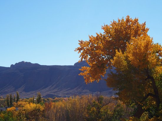 Landscape - Moab Springs Ranch Photo