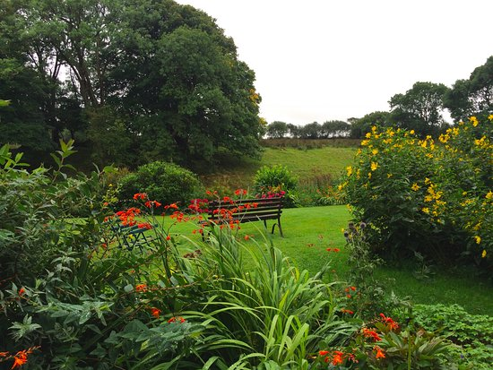 Llandysul, UK: The pretty front garden