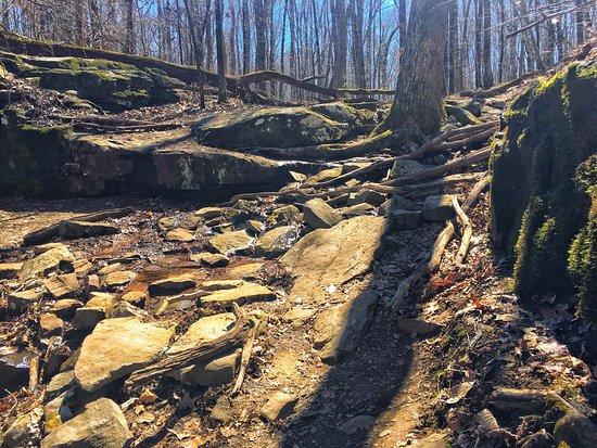 Blevins Gap Preserve