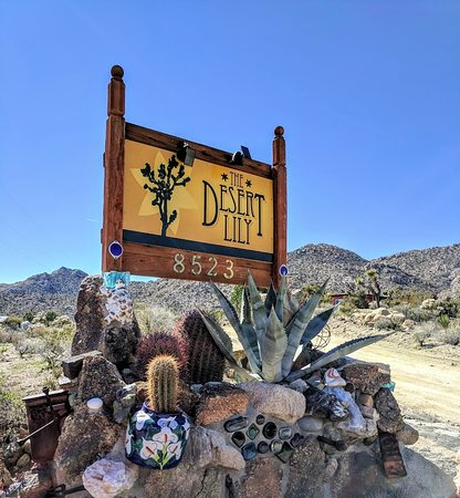 Joshua Tree, CA: Welcome to The Desert Lily!!