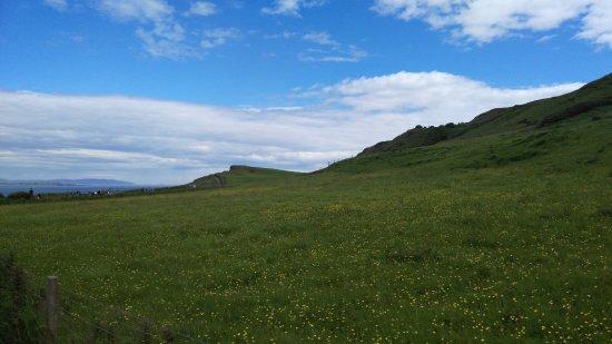 Ballintoy, UK: Fields...