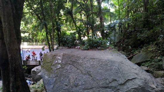 La Coca Falls: Nice flat rock by the falls for a picnic!