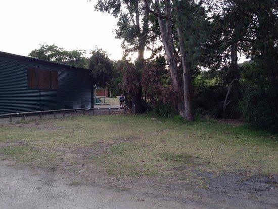 White Beach, أستراليا: Looking towards BBQ area and camp kitchen block