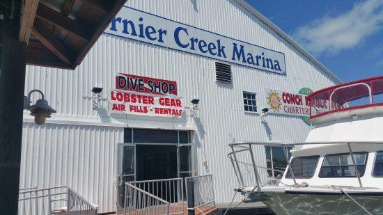 Tavernier, FL: Conch Republic Divers