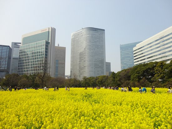 Photo of Botanical Garden Hama Rikyu Gardens at 浜離宮庭園1‐1, Chuo 104-0046, Japan
