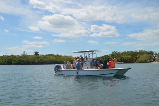 Green Turtle Cay: Spacious boats