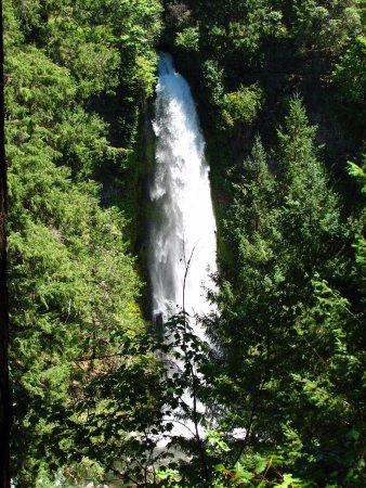 I think this was Mill Creek Falls just down a trail in Prospect,Or.