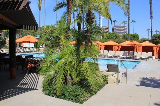 Hotel irvine 121 1 4 3 updated 2018 prices - Menzies hotel irvine swimming pool ...