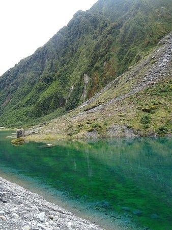 Fox Glacier, Nya Zeeland: photo2.jpg