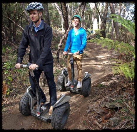 Leura, Australia: Bushtracks around the Fairmont Resort