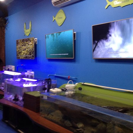 Port Alberni, Kanada: Alberni Aquarium and Stewardship Centre