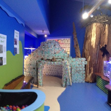 Port Alberni, Canadá: Alberni Aquarium and Stewardship Centre