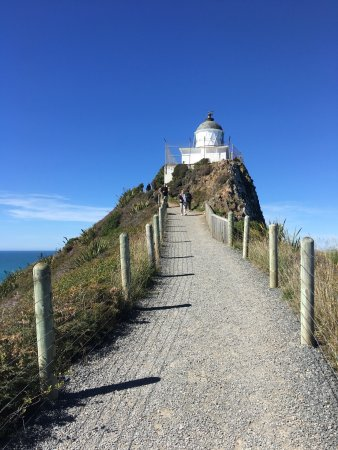 Nugget Point: photo0.jpg