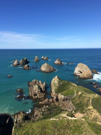 Nugget Point: photo1.jpg