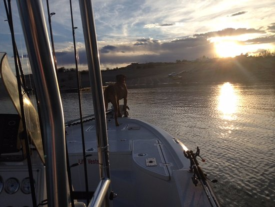 """Elephant Butte, NM: """"Anchor"""" guiding us in to the marina after a very productive day"""