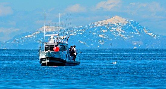 Ninilchik, อลาสกา: Fishing in Cook Inlet