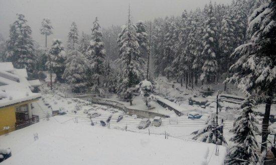 Suraj Cottage Manali Guesthouse Reviews Photos Rate