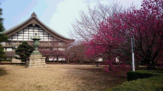 Soji-ji Temple Photo